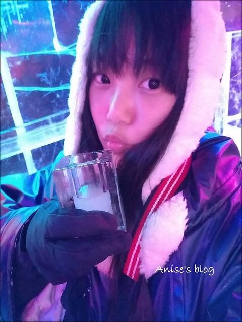 瑞典ICEBAR冰吧_030