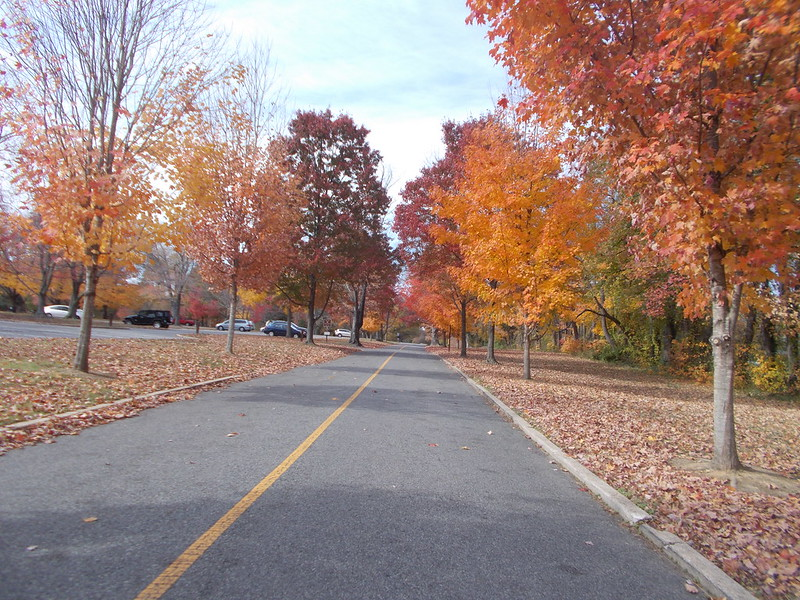 Fort Hunt Park never disappoints in the fall