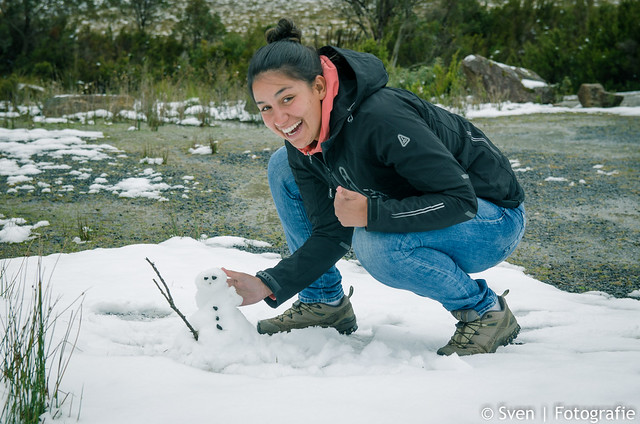 Tassie Snowman
