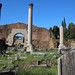 Small photo of Basilica Aemilia