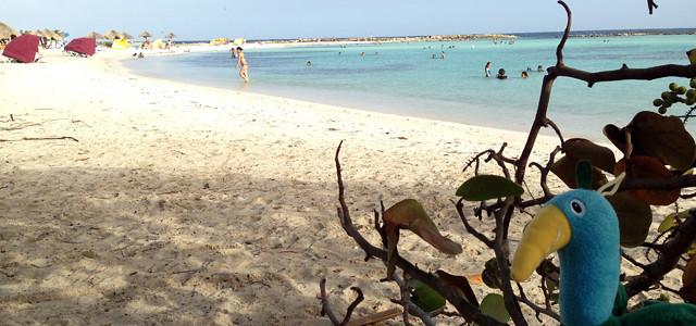 Aruba Dicas