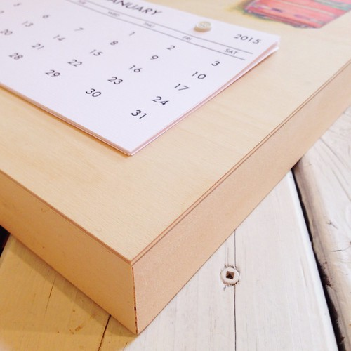 Cotton+Steel-2015 Calendar