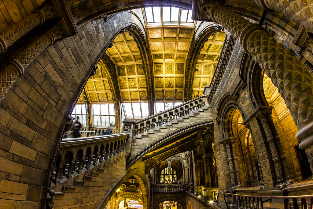 National history museum- London