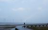 高美濕地(Gaomei Wetland)