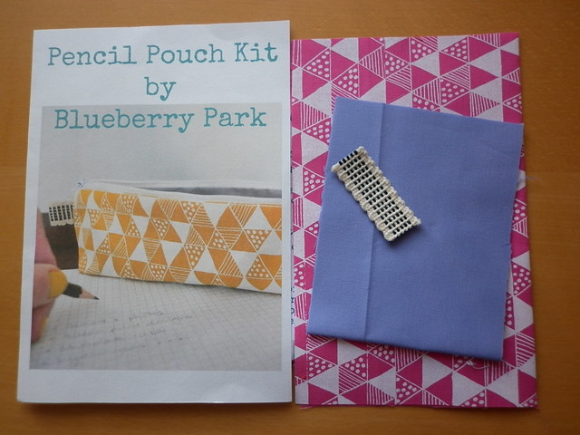 Blueberry Park pouch