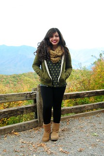 http://earnestyle.blogspot.com/2014/11/fall-in-love-with-fall-in-gatlinburg.html