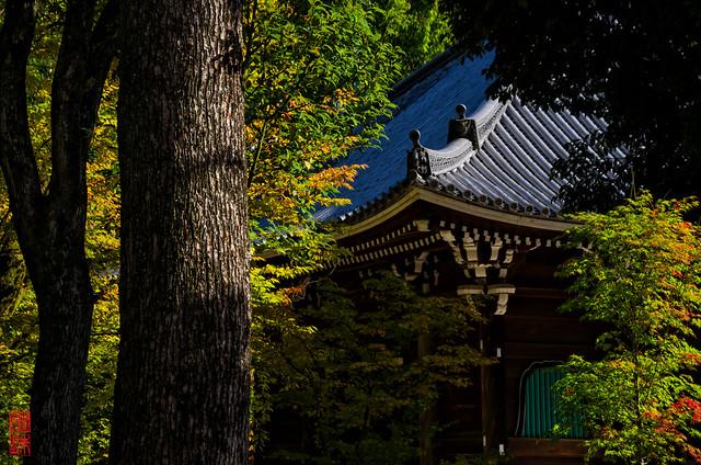 「間」 仁和寺 - 京都