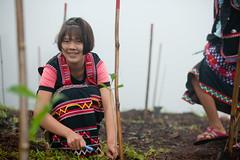 Soneva Forest Restoration Project, Chiang Mai 04