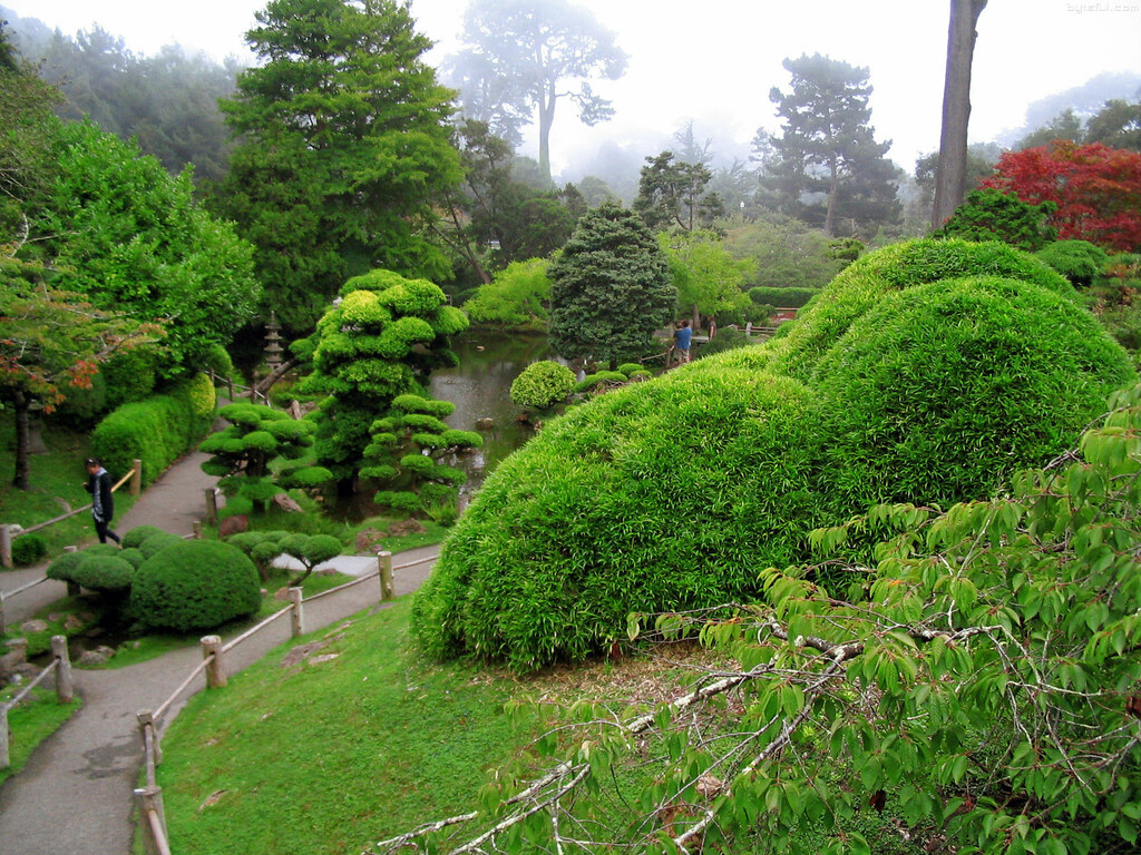Japanese tea garden san francisco photos aravinda loop for Japanese tea garden hours