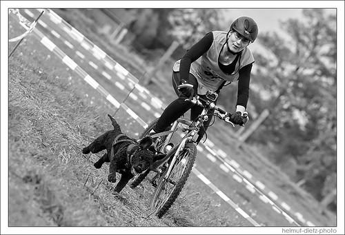 Zughundsport