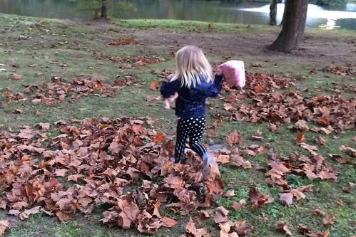 leaf crunching