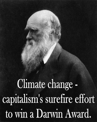 capitalism darwin awards