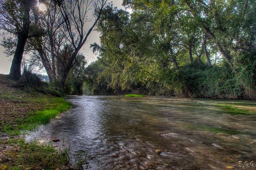 Río Jalón (Plasencia de Jalón)
