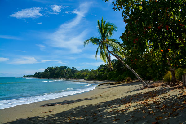 Beach at Yoga Teacher Training in Costa Rica