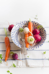 Radish, Carrots and Fresh Herbs for soup
