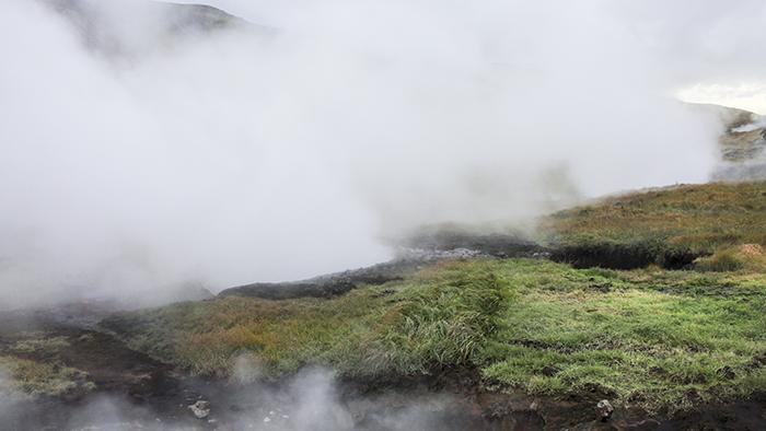 Iceland_Spiegeleule_August2014 044
