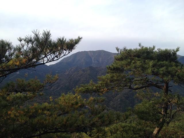 福王山から竜ヶ岳