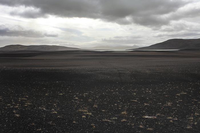Iceland_Spiegeleule_August2014 150
