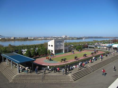 金沢競馬場のパドックを見下ろす