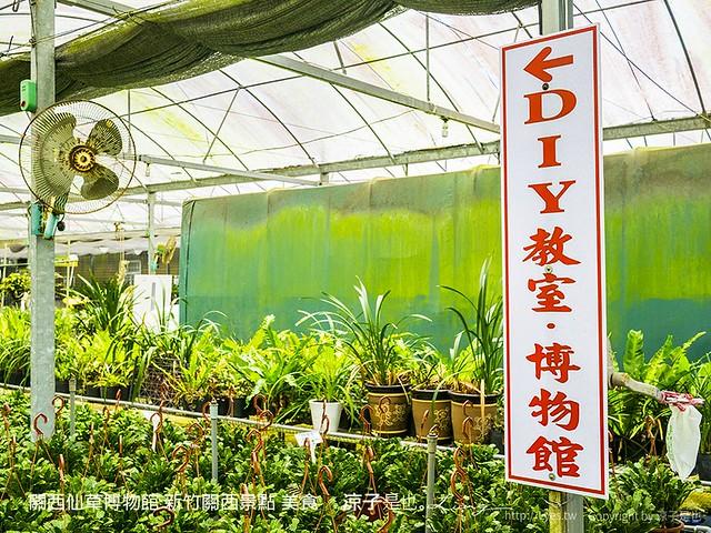 關西仙草博物館 新竹關西景點 美食 59