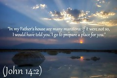 John 14:2 nlt