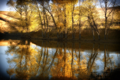 autumn color reflection fall water leaves pond nikon foliage northdakota prairie nikkor plains d4 7020028