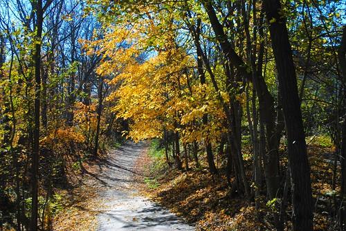 usa fall nature illinois midwest unitedstates richmond il biketrail walkingtrail mchenrycounty richmondil prairietrail richmondillinois