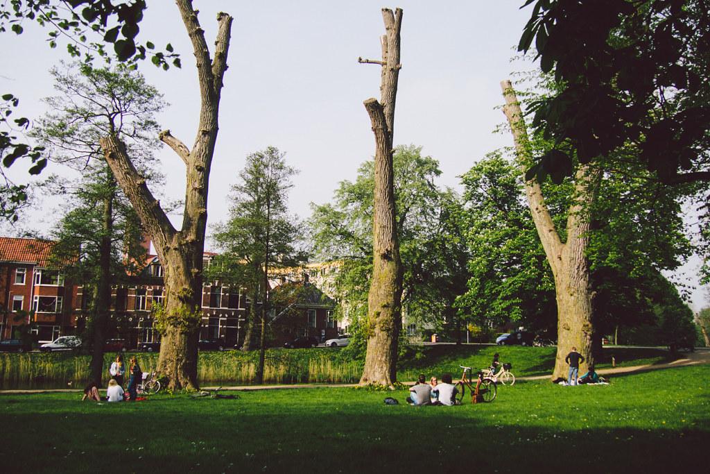 Untitled 格羅寧根 轆轆遊遊。荷蘭隱世單車小鎮 格羅寧根(下) 15319004538 2571b0fff6 b