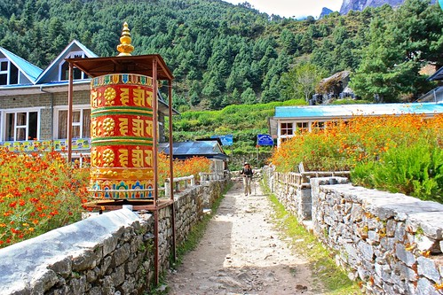 Orange flowers in full bloom, matching the prayer wheel