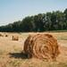 bales of hay // hot Ahtuba