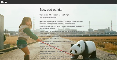 bad bad panda flickr