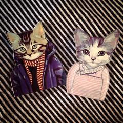 Eles chegaram!!! Novos broches de acrílico. Lindos de viver! Monte seu look. Corre na lojinha: manumonumei.tanlup.com #manumonumei #bottons #broches #lookdodia #fashioncats #cata #gatos #gato #gata