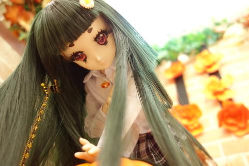 かぼちゃその5。