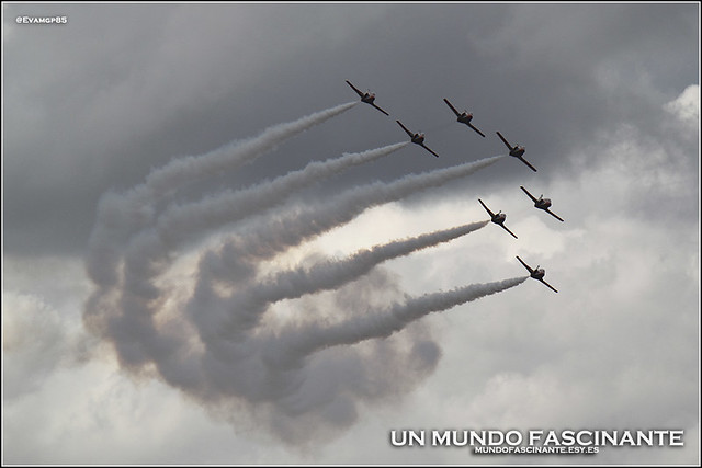 11OCT-Aguila04