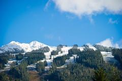 Snow line creeping down Blackcomb
