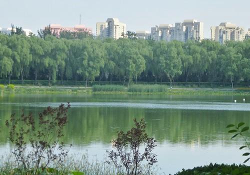 Beijing-Parc Longtan (2)