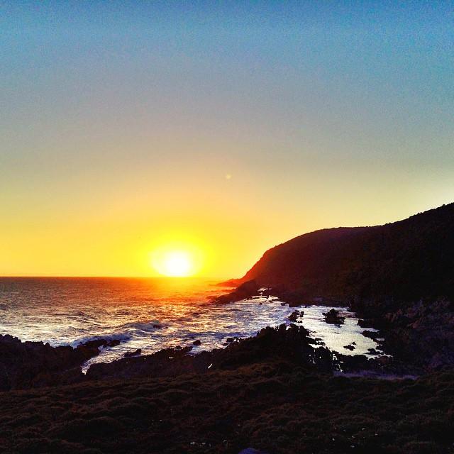 Bilder der Woche 2 aus Südafrika by lunchforone