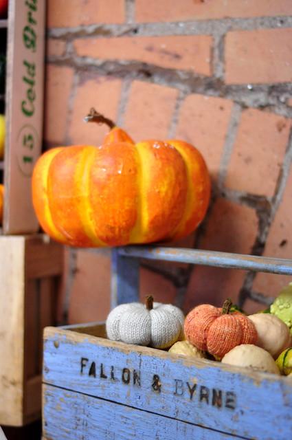 pumpkins-016