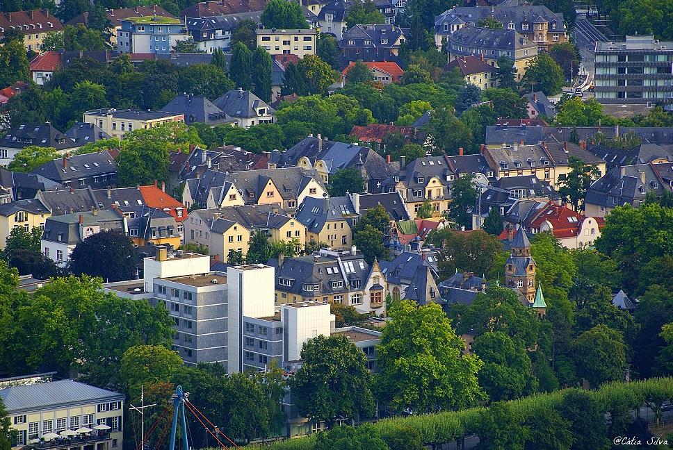 Frankfurt Views  (9)