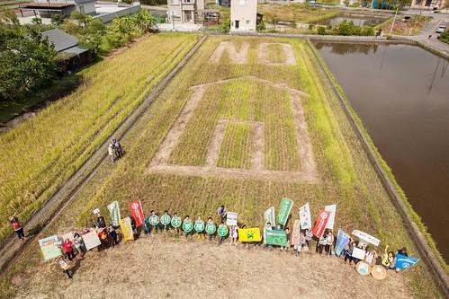 聯署團體在農田中大會師。(圖片來源:守護宜蘭聯盟提供)