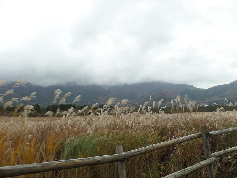 View of Hakone Fields