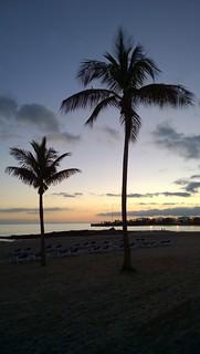 Immagine di Playa del Reducto vicino a Arrecife. lanzarote