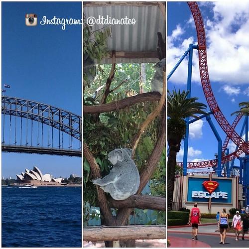 2014 Australia