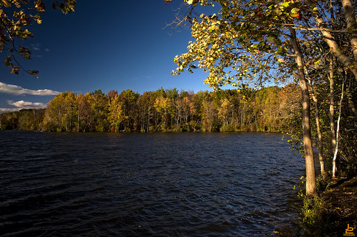 new autumn trees water franklin lakes nj jersey d750 foilage