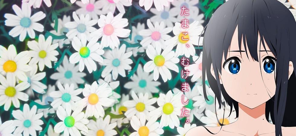 Xem phim Tamako Love Story [BD] - Tamako Love Story [Blu-ray] Vietsub
