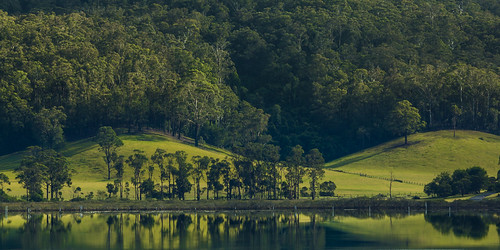 trees lake reflection water rural sunrise landscape dawn countryside scenery farm australia lagoon nsw newsouthwales scape wapengo greystump copyrightcolinpilliner