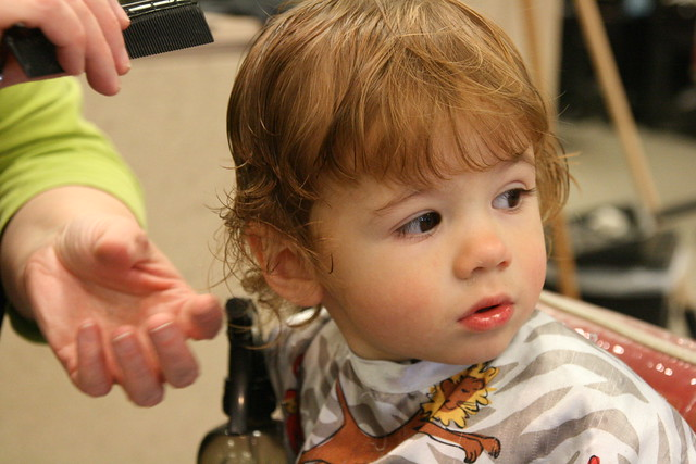 Tiny's First Haircut