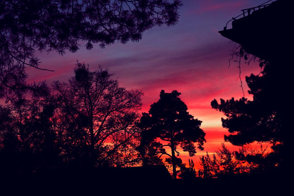 119/365 - sunset