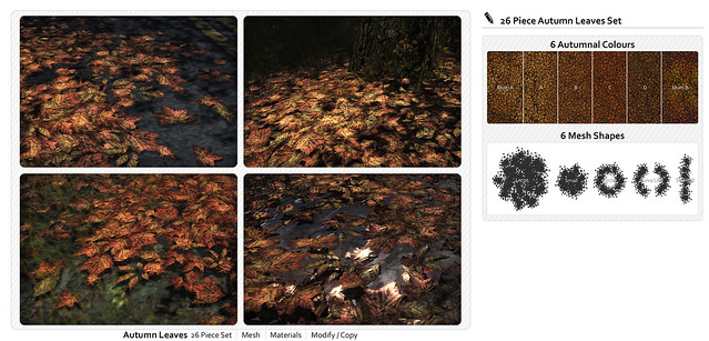NEW | Autumnal Leaves Set