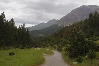 106 Wandeling nationaal park Zwitserland